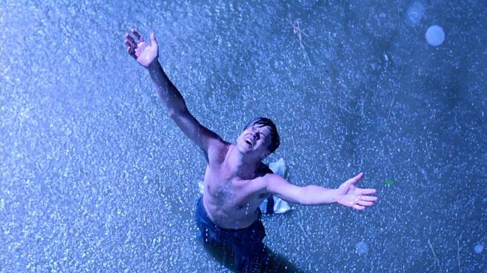 shawshank-redemption-andy-in-the-rain.jpg